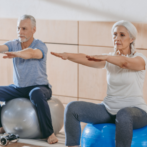 couples training exercise ball